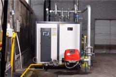 天然气蒸汽锅炉性能如何?