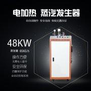 48KW电蒸气发生器
