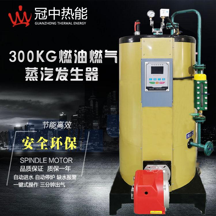 300KG燃气蒸汽发生器