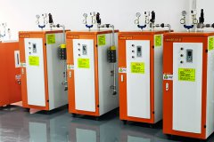 电加热蒸汽发生器更能辅助食品厂增效节